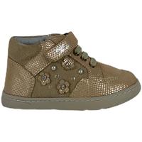 Schoenen Kinderen Laarzen Chicco 01064675000000 Beige