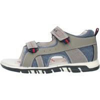Schoenen Jongens Sandalen / Open schoenen Lumberjack SB42106005X84 Grey