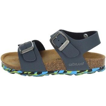 Schoenen Kinderen Sandalen / Open schoenen Grunland SB1644-40 Blue