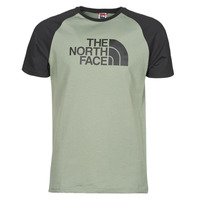 Textiel Heren T-shirts korte mouwen The North Face S/S RAGLAN EASY TEE Groen