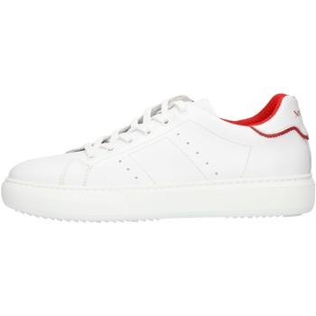 Schoenen Heren Lage sneakers NeroGiardini E102026U White