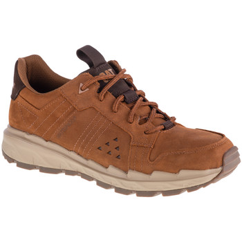 Schoenen Heren Lage sneakers Caterpillar Startify LO WP Marron
