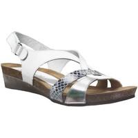 Schoenen Dames Sandalen / Open schoenen Xapatan 9105 Wit / zilver