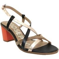 Schoenen Dames Sandalen / Open schoenen Gioseppo Stanton Zwart / bruin
