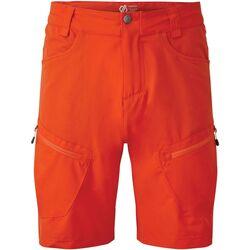 Textiel Heren Korte broeken / Bermuda's Dare 2b Tuned Trail Blaze Red