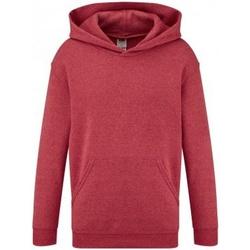 Textiel Kinderen Sweaters / Sweatshirts Fruit Of The Loom SS14B Heather Rood