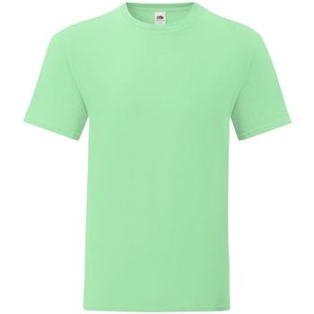 Textiel Heren T-shirts korte mouwen Fruit Of The Loom 61430 Muntgroen