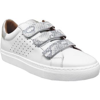 Schoenen Dames Lage sneakers K.mary Claros Wit / zilver