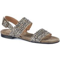 Schoenen Dames Sandalen / Open schoenen Ca Shott sandaal 19076 Cognac/Camel