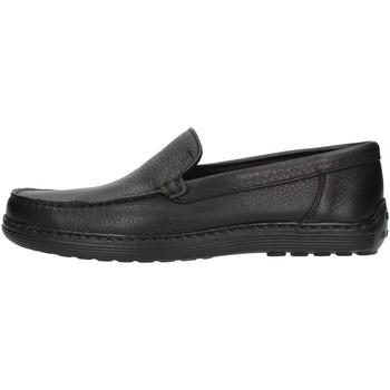 Schoenen Heren Mocassins Notton 807 Black