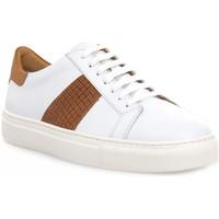 Schoenen Heren Lage sneakers Soldini COLORADO BIANCO CUOIO Bianco