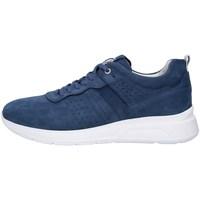 Schoenen Heren Lage sneakers NeroGiardini P900920U BLUE