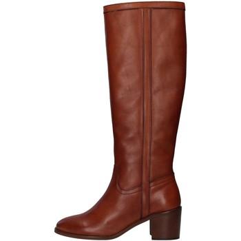 Schoenen Dames Hoge laarzen Paola Ferri D7285 BROWN