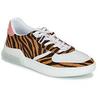 Schoenen Dames Lage sneakers Coach CITYSOLE COURT Multicolour