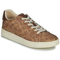 Schoenen Dames Lage sneakers Coach LOWLINE Bruin