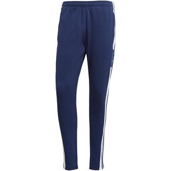 Textiel Heren Trainingsbroeken adidas Originals Squadra 21 Sweat Pant Blau