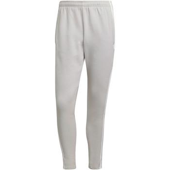 Textiel Heren Trainingsbroeken adidas Originals Squadra 21 Sweat Pant Grau