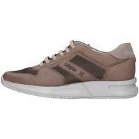 Schoenen Heren Lage sneakers CallagHan 91314 BEIGE