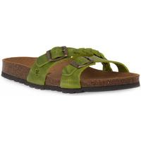 Schoenen Dames Leren slippers Bioline 233 ALOHE INGRASSATO Verde