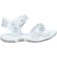 Schoenen Meisjes Sandalen / Open schoenen Chicco 01065377000000 Wit