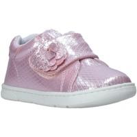 Schoenen Kinderen Lage sneakers Chicco 01065679000000 Roze