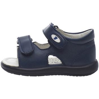 Schoenen Kinderen Sandalen / Open schoenen Falcotto 1500728 01 Blauw