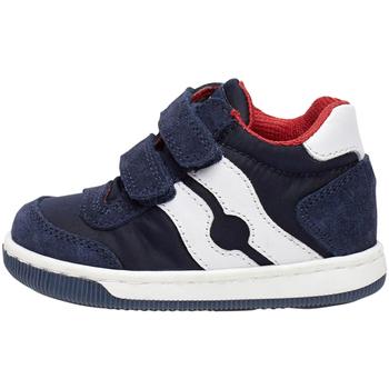 Schoenen Kinderen Sneakers Falcotto 2014156 01 Blauw