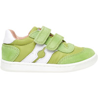Schoenen Kinderen Lage sneakers Falcotto 2014666 01 Groen
