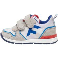 Schoenen Kinderen Sneakers Falcotto 2014924 03 Grijs