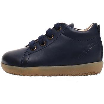 Schoenen Kinderen Sneakers Falcotto 2014581 01 Blauw