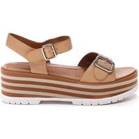 Schoenen Dames Sandalen / Open schoenen Stonefly 213920 Bruin
