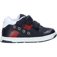 Schoenen Kinderen Sneakers Chicco 01065653000000 Blauw