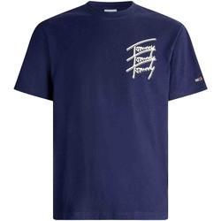Textiel Heren T-shirts korte mouwen Tommy Jeans DM0DM10228 Blauw