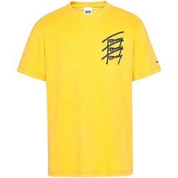 Textiel Heren T-shirts korte mouwen Tommy Jeans DM0DM10228 Geel