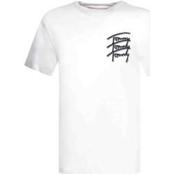 Textiel Heren T-shirts korte mouwen Tommy Jeans DM0DM10228 Wit