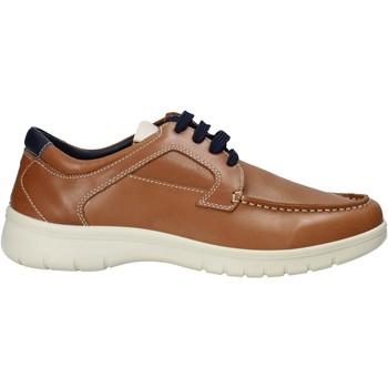 Schoenen Heren Sneakers Melluso XU17128 Bruin