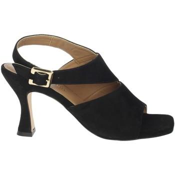 Schoenen Dames Sandalen / Open schoenen Paola Ferri D7437 Black