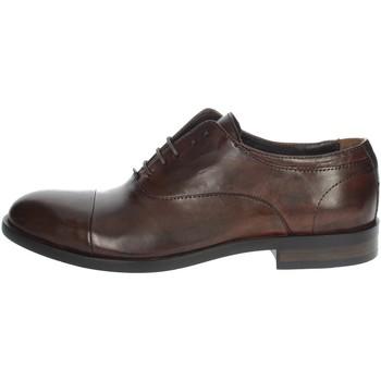 Schoenen Heren Mocassins Payo 1236 Brown leather