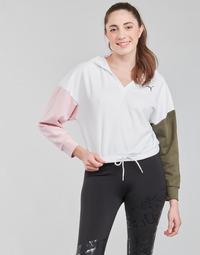 Textiel Dames Sweaters / Sweatshirts Puma MODERN SPORT HOODIE Wit / Multicolour