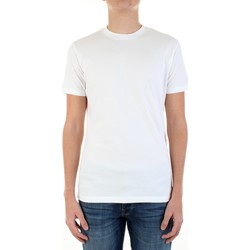 Textiel Heren T-shirts korte mouwen Ice Play F016-P400 Bianco