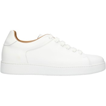Schoenen Heren Lage sneakers Rogal's MUR1 White