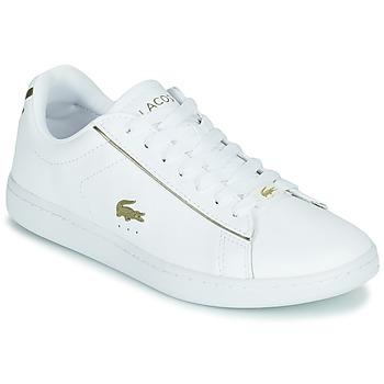 Schoenen Dames Lage sneakers Lacoste CARNABY EVO 0721 3 SFA Wit
