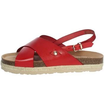 Schoenen Dames Sandalen / Open schoenen Yokono JAVA-153 Red