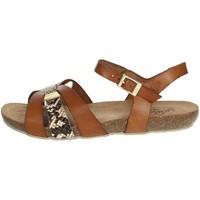Schoenen Dames Sandalen / Open schoenen Yokono IBIZA-153 Brown leather