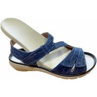 Schoenen Dames Sandalen / Open schoenen Calzaturificio Loren LOQ6973blu blu
