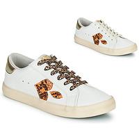 Schoenen Dames Lage sneakers Le Temps des Cerises AUSTIN Wit / Goud