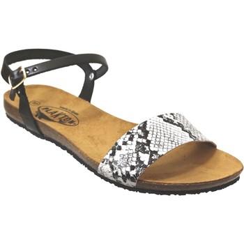 Schoenen Dames Sandalen / Open schoenen Plakton Mam-ambo-575725 Zwart wit