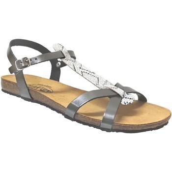 Schoenen Dames Sandalen / Open schoenen Plakton Mam coco Grijs metaal leer