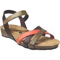 Schoenen Dames Sandalen / Open schoenen Plakton Note Bruin / goud leer