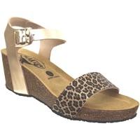 Schoenen Dames Sandalen / Open schoenen Plakton Brissa Metallic platina
